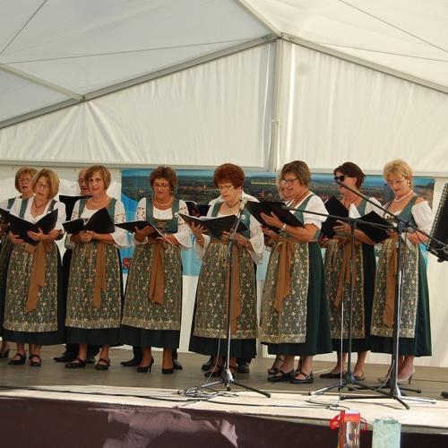 Folklórne popoludnie medzi obcami Nyergesújfalu a Mužla