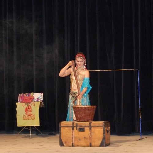 Predstavenie cirkusu Karlson