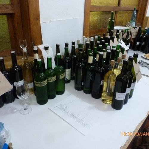 Ochutávka mladého vína 2020